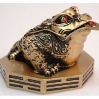 Feng Shui Lucky Money Coin Frog on Bagua Gold Large