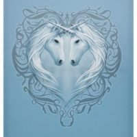 Unicorn Picture Canvas Print Heart Frame Wall Art
